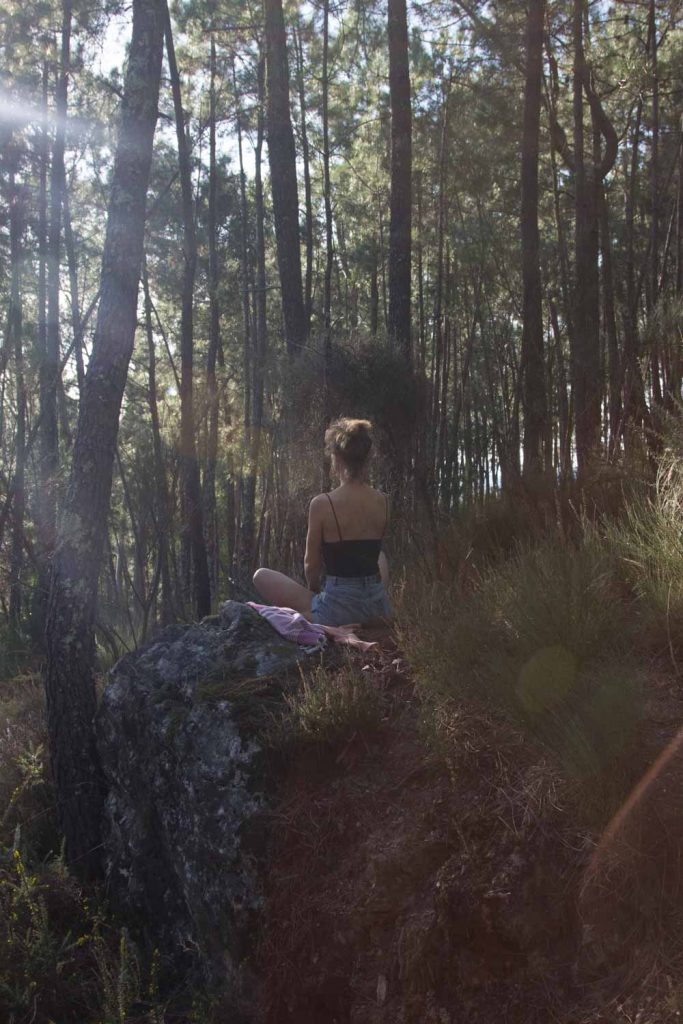 Into the Wild with Lynn
